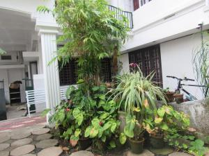 Bay Mansion Homestay, Alloggi in famiglia  Cochin - big - 25