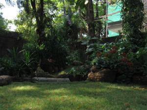 Bay Mansion Homestay, Alloggi in famiglia  Cochin - big - 27