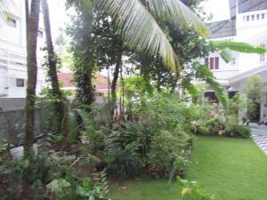 Bay Mansion Homestay, Alloggi in famiglia  Cochin - big - 28