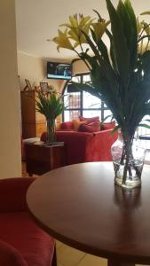 Casa Echavarria Boutique Hotel, Hotels  San José - big - 52