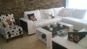 Villa Bellerose, Holiday homes  Bozhurets - big - 67
