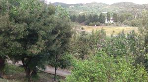 Casa Capudefigu