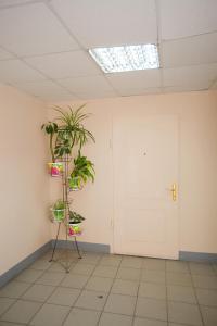 AG Apartment Kuznetcovskaya 11, Ferienwohnungen  Sankt Petersburg - big - 17