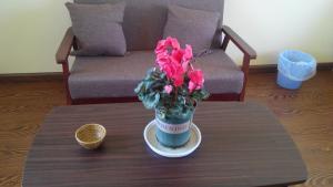 Mu Zi Li Hostel, Hostelek  Tali - big - 7