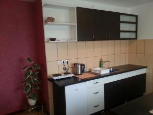 New Airport Apartments, Apartmanok  Belgrád - big - 10