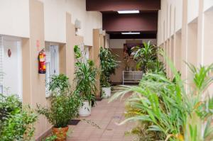 Ciudad de Alcala, Hotely  Alcalá de Henares - big - 44