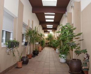 Ciudad de Alcala, Hotely  Alcalá de Henares - big - 15