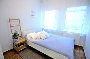 Vic Apartament Askja