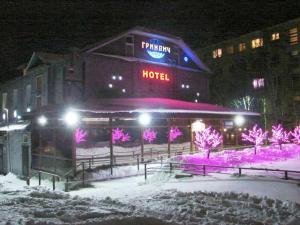 Мини-отель Гринвич - фото 4