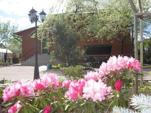 Гостевой дом Волшебный сад - фото 2