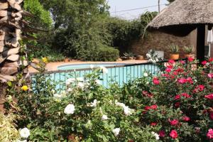 Lerato Bush Lodge