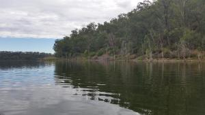 Reflections - Lake Cooby