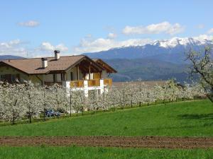 obrázek - Agriturismo Girasole