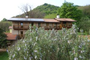 Agriturismo Sogni D' Orto, Bed and Breakfasts  Faedis - big - 19