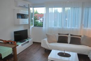 Cozy Apartment in Zemun, Apartmanok  Belgrád - big - 4