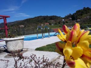Casa D`Auleira, Farmy  Ponte da Barca - big - 64