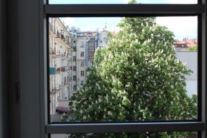 Апартаменты Независимости 23 - фото 21
