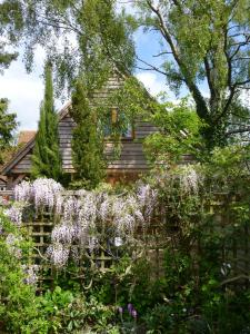 Wisteria Lodge (Detached Garden Annex)