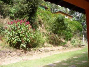 Eco Pousada Figueira Grande, Penziony  Piracaia - big - 21
