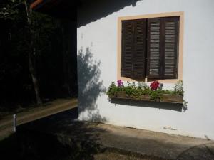 Eco Pousada Figueira Grande, Penziony  Piracaia - big - 31