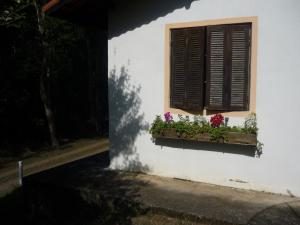 Eco Pousada Figueira Grande, Гостевые дома  Piracaia - big - 31