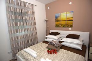 Apartments Lazeta