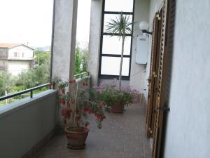 Casa Vacanze Le Castagnelle, Apartmány  Torchiara - big - 67