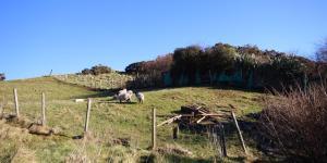 Roisin's House, Case vacanze  Clifden - big - 9
