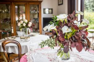 Villa Laly, Bed and breakfasts  Trieste - big - 34