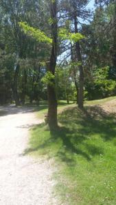 Appartamenti Villa Nella, Apartmanok  Caorle - big - 6