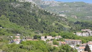 Loza Apartments