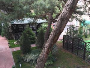 Гостевой дом Сосновая дача - фото 13