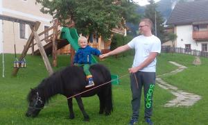 Hirschenhof, Farmy  Dobbiaco - big - 35