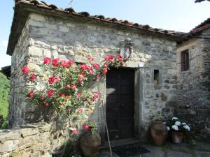 Dimora del Gallo - Case in Borgo