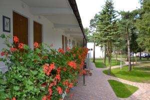 Neptuno Resort & Spa, Resorts  Dźwirzyno - big - 25