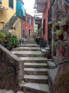 Monterosso Family Homes