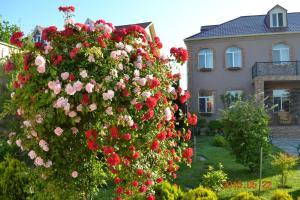 Вилла Резиденция Арлин - фото 9