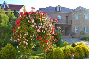 Вилла Резиденция Арлин, Баку