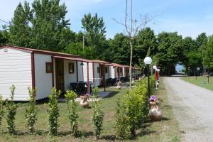 (Camping Vigna di Valle)