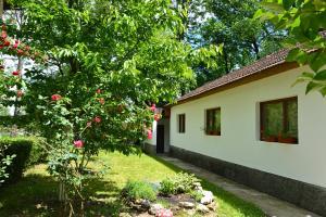 Hostel Una Rosa - фото 12