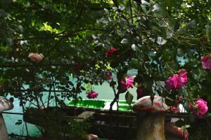 Hostel Una Rosa - фото 14