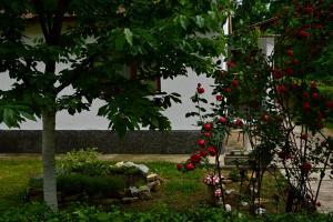 Hostel Una Rosa - фото 22