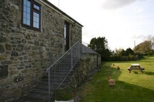 Tre at Chycarne Farm