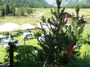 Hotel Paradisia - Cogne