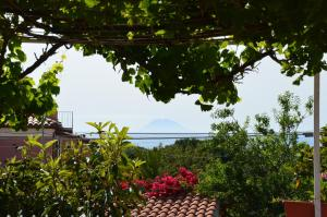 Villa Margherita, Holiday homes  Capo Vaticano - big - 45