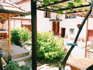 Guest house Nizama's Place - фото 1