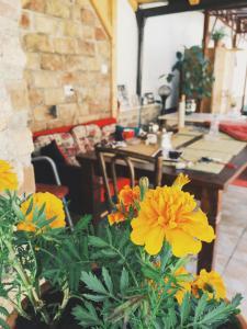 Guest house Nizama's Place - фото 14