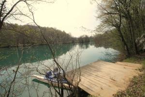 Villa Andy Mreznica, Case vacanze  Gornji Zvečaj - big - 38