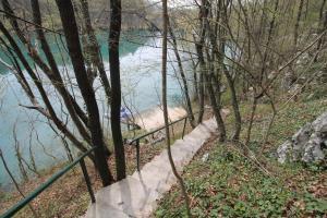 Villa Andy Mreznica, Case vacanze  Gornji Zvečaj - big - 26