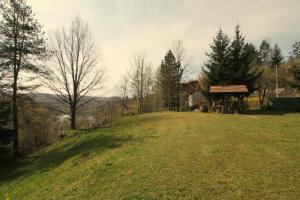 Villa Andy Mreznica, Case vacanze  Gornji Zvečaj - big - 7